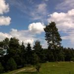 Landschaft bei Sastamala (Vammalla)